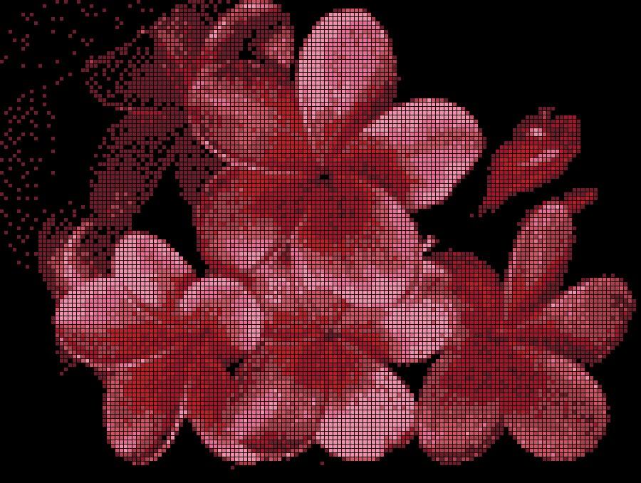 Цветы. схемы вышивки, вышивка